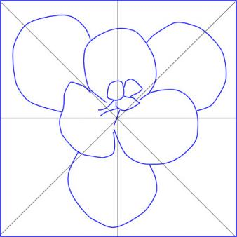 line drawing of crocus with central lines drawn