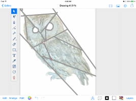 lily's foundation pieced owl
